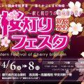 今年も開催!第5回桜灯りフェスタ!